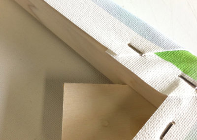 Canvas Wrap - Closeup
